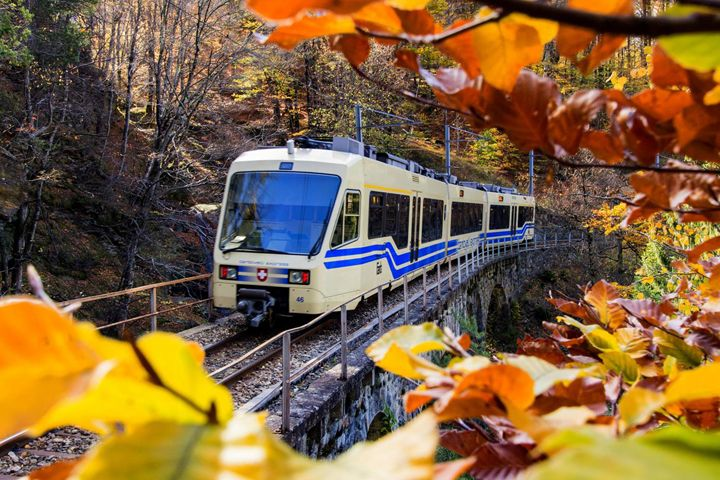 The «FOLIAGE» TRAIN IN THE VALLEY OF PAINTERS