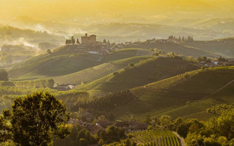 Langhe? Always a good idea!